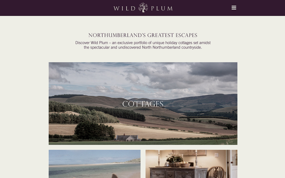 Wild Plum - Bespoke Website Development